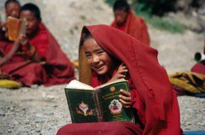 Meditatiedag ~ De vreugde van het zitten @ Zoom